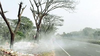 কুমিল্লা মহাসড়কে ময়লার আগুনে পুড়ছে মূল্যবান গাছ