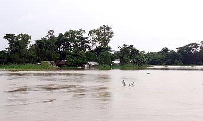 কুশিয়ারা নদীর পানি বিপদসীমার ৪৭ সে.মি. ওপরে