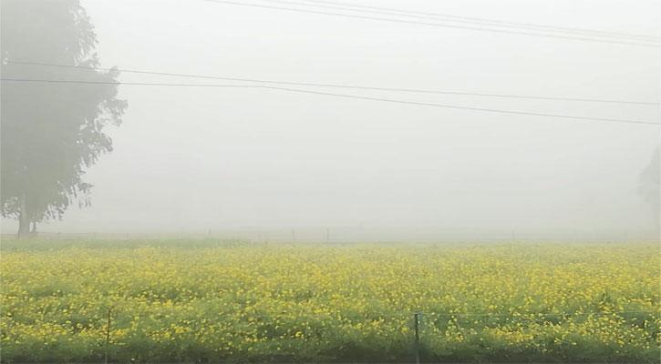 কুড়িগ্রামে সর্বনিম্ন তাপমাত্রা ১০.৮ ডিগ্রি সেলসিয়াস