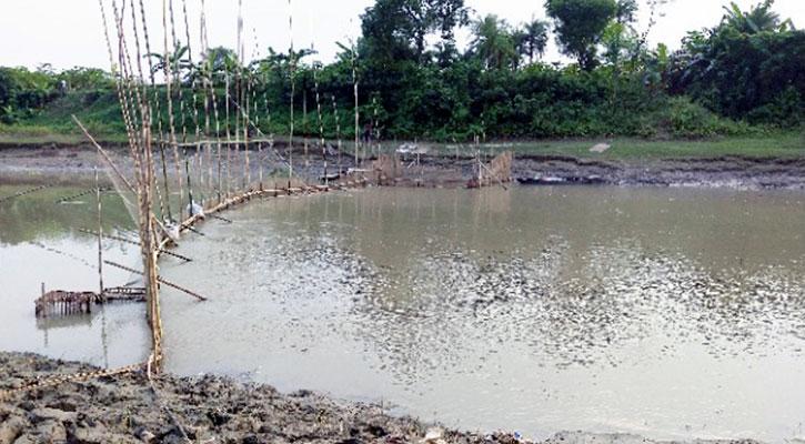 নদীতে নাব্য সংকট, বিলুপ্ত হচ্ছে দেশি প্রজাতির মাছ