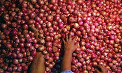 ভারতে ডাবল সেঞ্চুরির পথে পেঁয়াজ