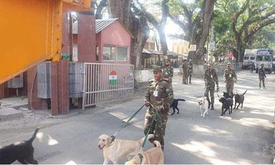 ভারতের উপহার : ১০টি প্রশিক্ষণপ্রাপ্ত কুকুর পেল সেনাবাহিনী
