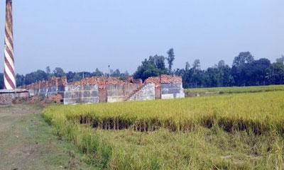 অবৈধ ইটভাটা বন্ধ করলো ভ্রাম্যমাণ আদালত