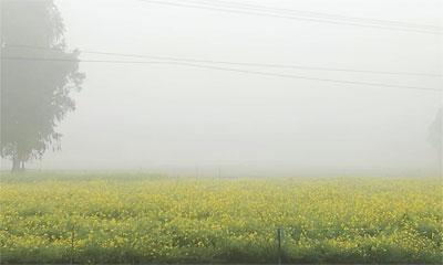 কনকনে শীতে কাঁপছে নওগাঁ