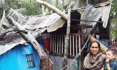 বুলবুলে মোংলায় ১৩৭০টি ঘরবাড়ি বিধ্বস্ত, বিদ্যুৎ সরবরাহ বন্ধ