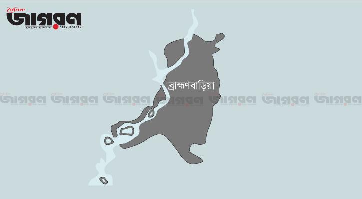 বিদ্যুৎস্পৃষ্টে চাচা-ভাতিজার মৃত্যু